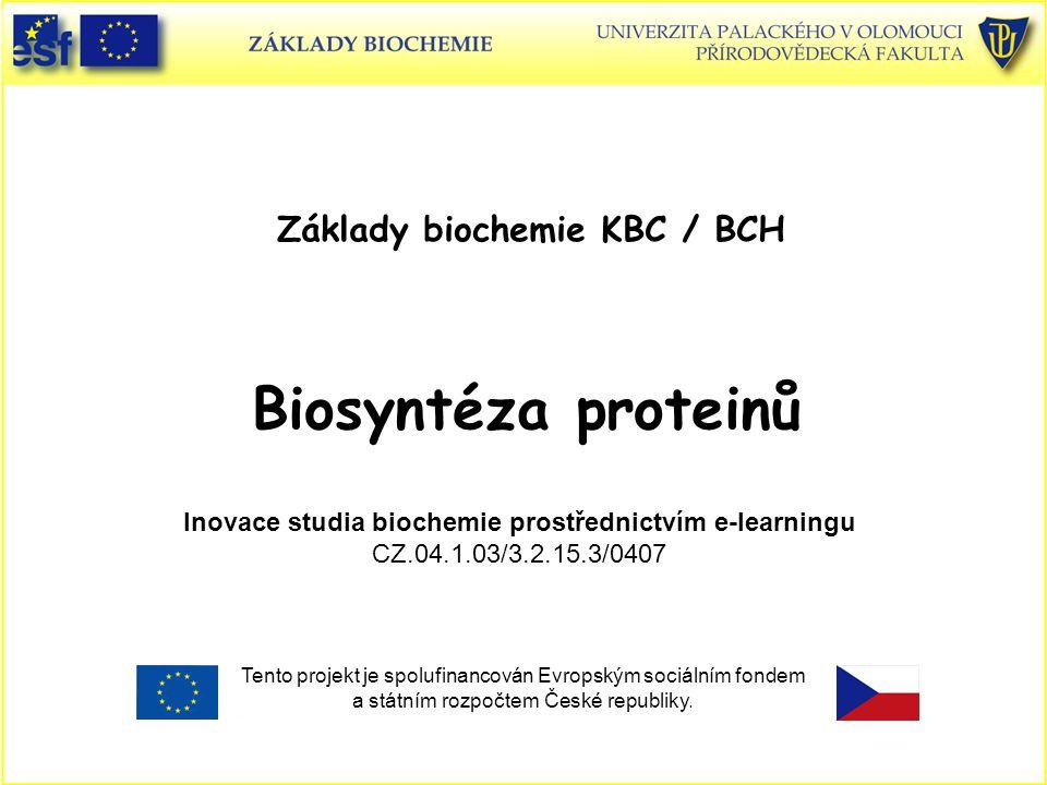 Osnova Charakteristika genetického kódu Prokaryotní biosyntéza proteinů a) Struktura a funkce transferové (přenosové) tRNA b) Ribosom - nukleoproteinová částice Mechanismus biosyntézy proteinů d) Role proteinových faktorů při proteosyntéze e) Tři vazebná místa pro tRNA na ribosomech f) Mechanismus translokace g) Terminace proteosyntézy – stop kodon Eukaryotní biosyntéza proteinů Antibiotika jako inhibitory proteosyntézy