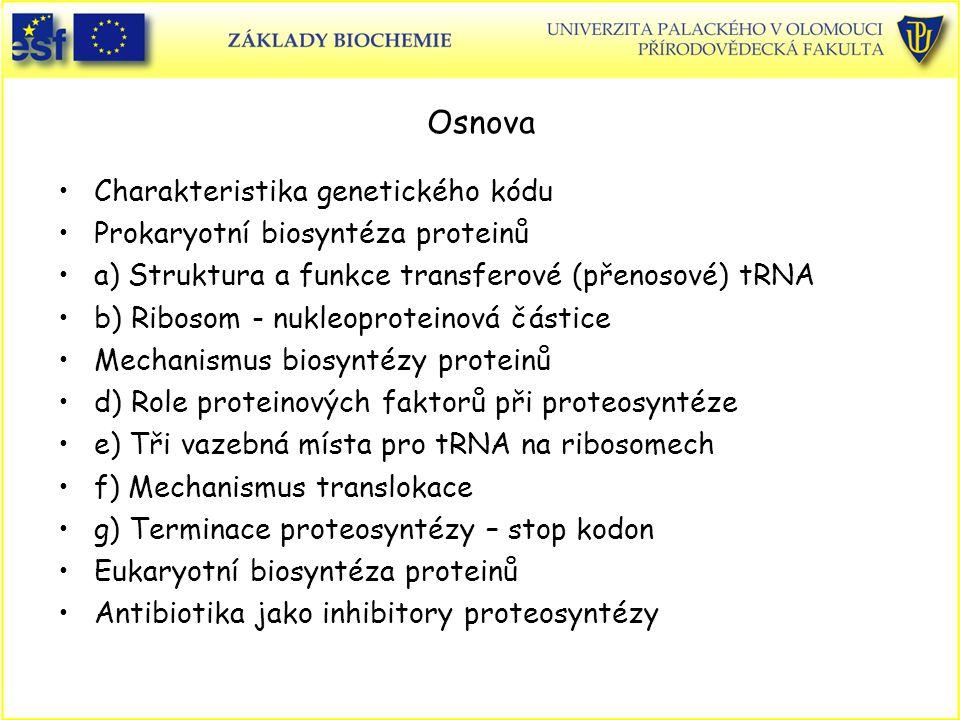 Osnova Charakteristika genetického kódu Prokaryotní biosyntéza proteinů a) Struktura a funkce transferové (přenosové) tRNA b) Ribosom - nukleoproteino
