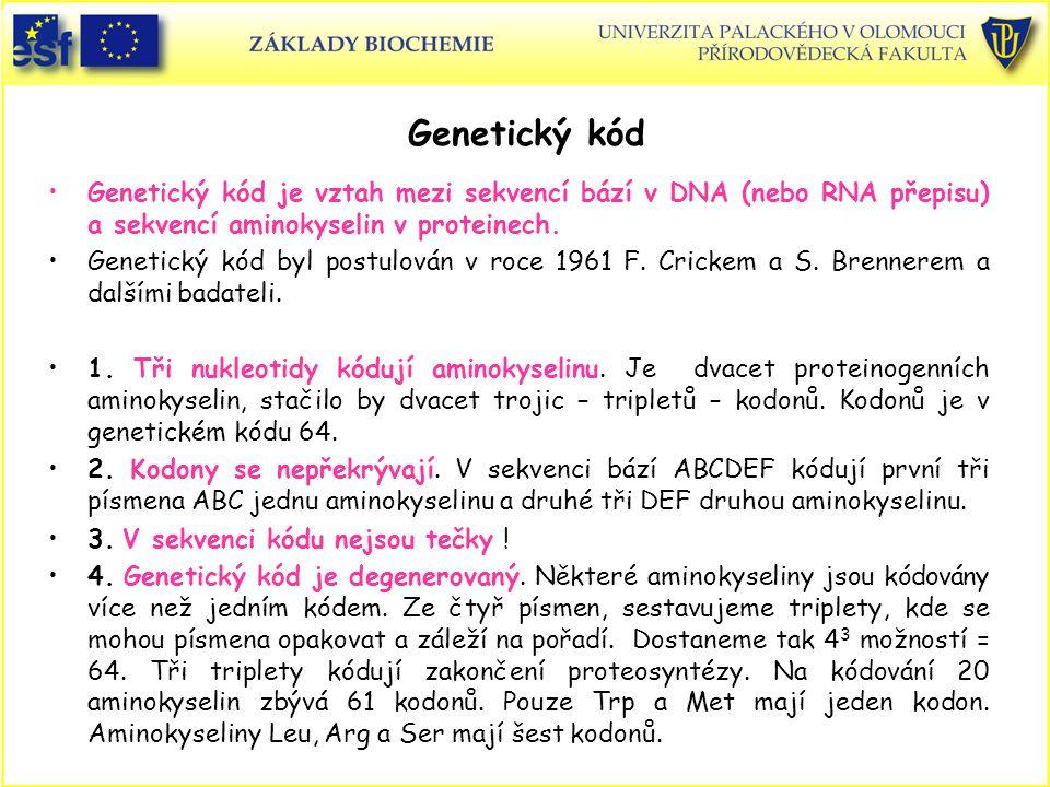 Genetický kód Genetický kód je vztah mezi sekvencí bází v DNA (nebo RNA přepisu) a sekvencí aminokyselin v proteinech. Genetický kód byl postulován v