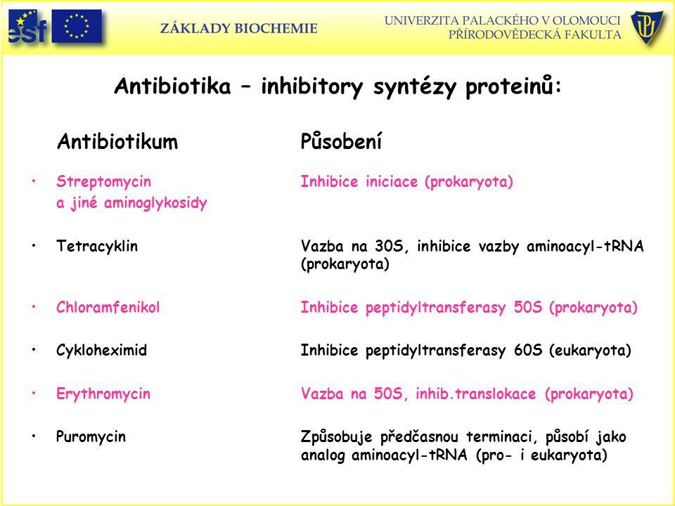 Antibiotika – inhibitory syntézy proteinů: AntibiotikumPůsobení StreptomycinInhibice iniciace (prokaryota) a jiné aminoglykosidy TetracyklinVazba na 3