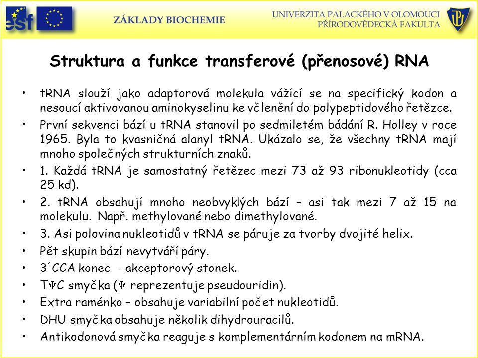 Tři z možných neobvyklých bází tRNA