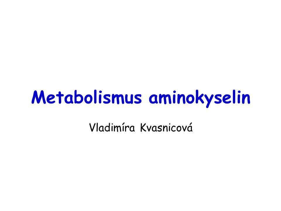 Metabolismus aminokyselin Vladimíra Kvasnicová