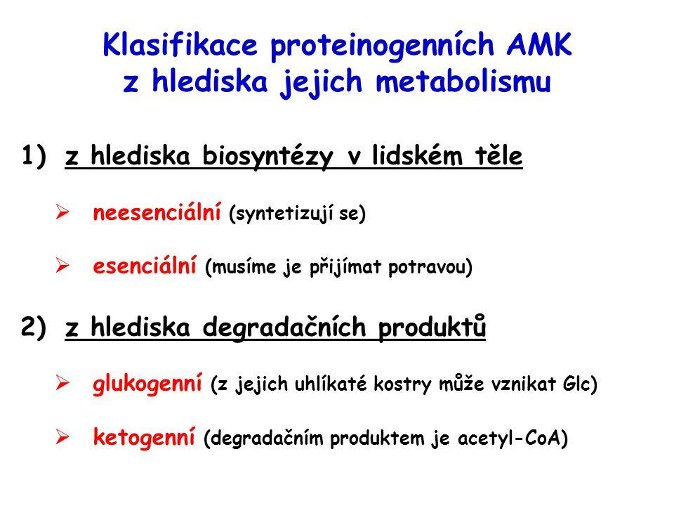 Klasifikace proteinogenních AMK z hlediska jejich metabolismu 1)z hlediska biosyntézy v lidském těle  neesenciální (syntetizují se)  esenciální (mus