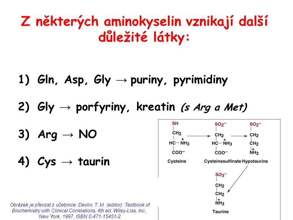 Z některých aminokyselin vznikají další důležité látky: 1)Gln, Asp, Gly → puriny, pyrimidiny 2)Gly → porfyriny, kreatin (s Arg a Met) 3)Arg → NO 4)Cys