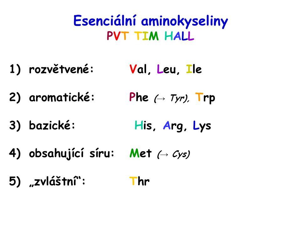 Esenciální aminokyseliny PVT TIM HALL 1)rozvětvené: Val, Leu, Ile 2)aromatické: Phe ( → Tyr), Trp 3)bazické: His, Arg, Lys 4)obsahující síru: Met ( →