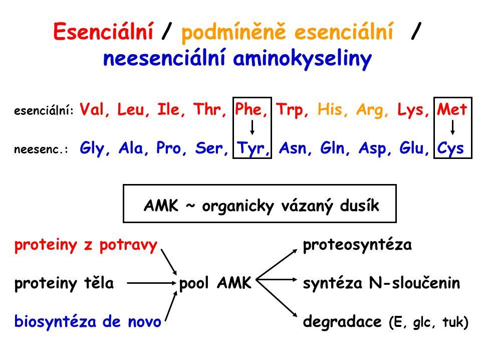 Esenciální / podmíněně esenciální / neesenciální aminokyseliny esenciální: Val, Leu, Ile, Thr, Phe, Trp, His, Arg, Lys, Met neesenc.: Gly, Ala, Pro, S