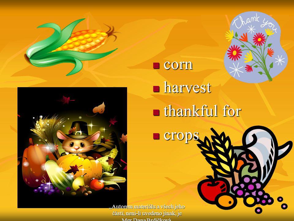 """corn corn harvest harvest thankful for thankful for crops crops """"Autorem materiálu a všech jeho částí, není-li uvedeno jinak, je Mgr.Dana Brdíčková."""