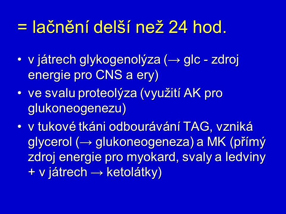 = lačnění delší než 24 hod. v játrech glykogenolýza (→ glc - zdroj energie pro CNS a ery)v játrech glykogenolýza (→ glc - zdroj energie pro CNS a ery)