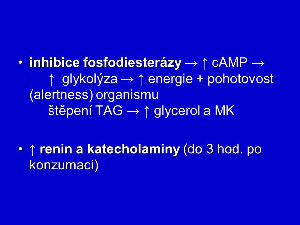inhibice fosfodiesterázyinhibice fosfodiesterázy → ↑ cAMP → ↑ glykolýza → ↑ energie + pohotovost (alertness) organismu štěpení TAG → ↑ glycerol a MK ↑