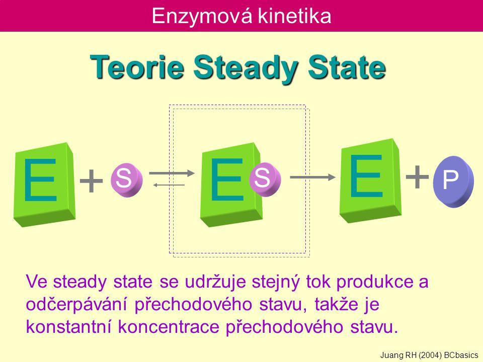Enzymová kinetika E S + P + Teorie Steady State Ve steady state se udržuje stejný tok produkce a odčerpávání přechodového stavu, takže je konstantní k