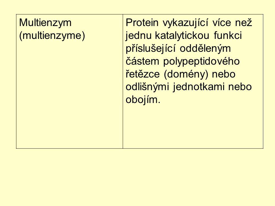 Multienzym (multienzyme) Protein vykazující více než jednu katalytickou funkci příslušející odděleným částem polypeptidového řetězce (domény) nebo odl
