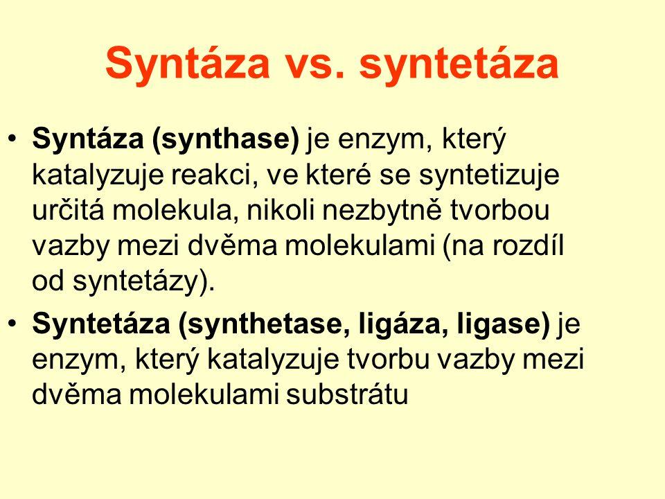 Syntáza vs. syntetáza Syntáza (synthase) je enzym, který katalyzuje reakci, ve které se syntetizuje určitá molekula, nikoli nezbytně tvorbou vazby mez