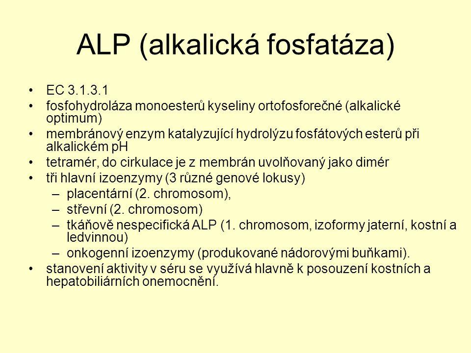 ALP (alkalická fosfatáza) EC 3.1.3.1 fosfohydroláza monoesterů kyseliny ortofosforečné (alkalické optimum) membránový enzym katalyzující hydrolýzu fos