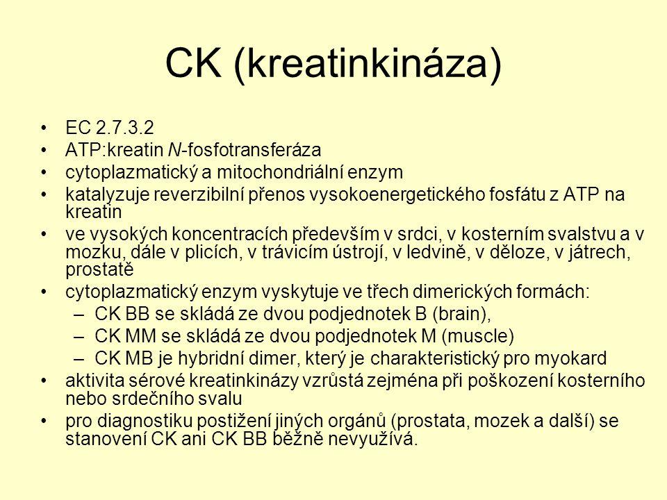 CK (kreatinkináza) EC 2.7.3.2 ATP:kreatin N-fosfotransferáza cytoplazmatický a mitochondriální enzym katalyzuje reverzibilní přenos vysokoenergetickéh