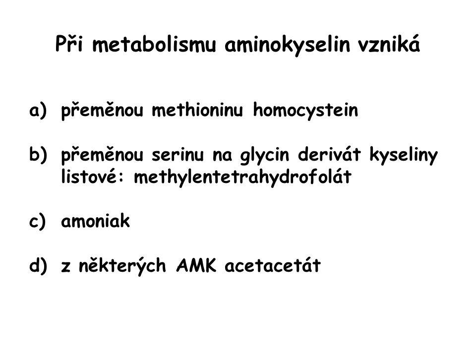 Při metabolismu aminokyselin vzniká a)přeměnou methioninu homocystein b)přeměnou serinu na glycin derivát kyseliny listové: methylentetrahydrofolát c)