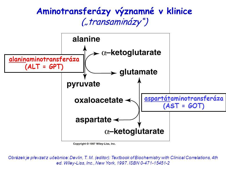 Obrázek je převzat z učebnice: Devlin, T. M. (editor): Textbook of Biochemistry with Clinical Correlations, 4th ed. Wiley ‑ Liss, Inc., New York, 1997