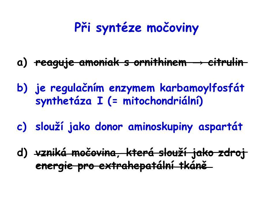 Při syntéze močoviny a)reaguje amoniak s ornithinem → citrulin b)je regulačním enzymem karbamoylfosfát synthetáza I (= mitochondriální) c)slouží jako