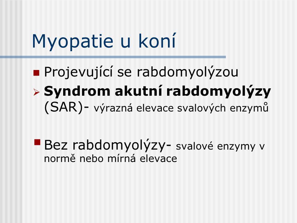 Syndrom akutní rabdomyolýzy (SAR) Ztuhlost, otok a bolestivost svalů, neochota k pohybu, ulehnutí, myoglobinurie.