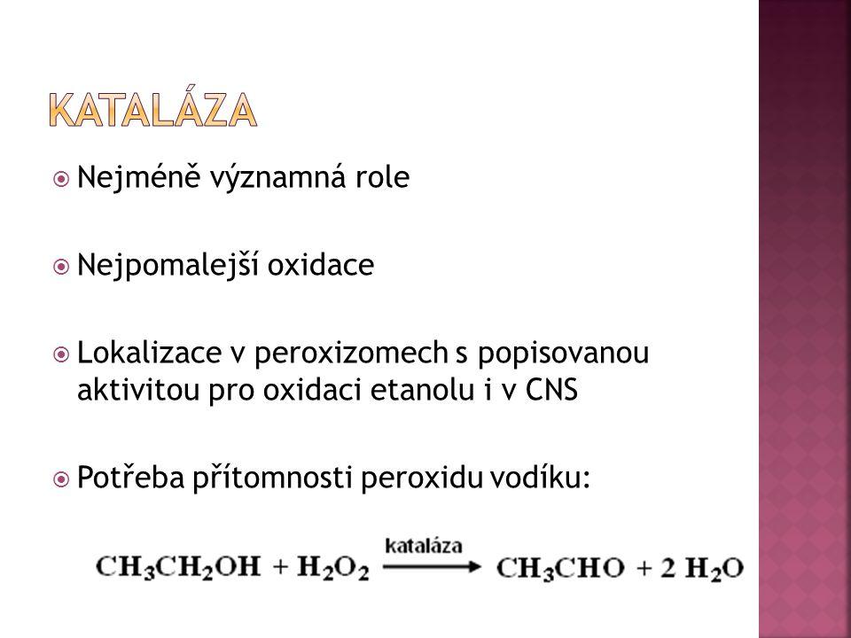  Nejméně významná role  Nejpomalejší oxidace  Lokalizace v peroxizomech s popisovanou aktivitou pro oxidaci etanolu i v CNS  Potřeba přítomnosti p