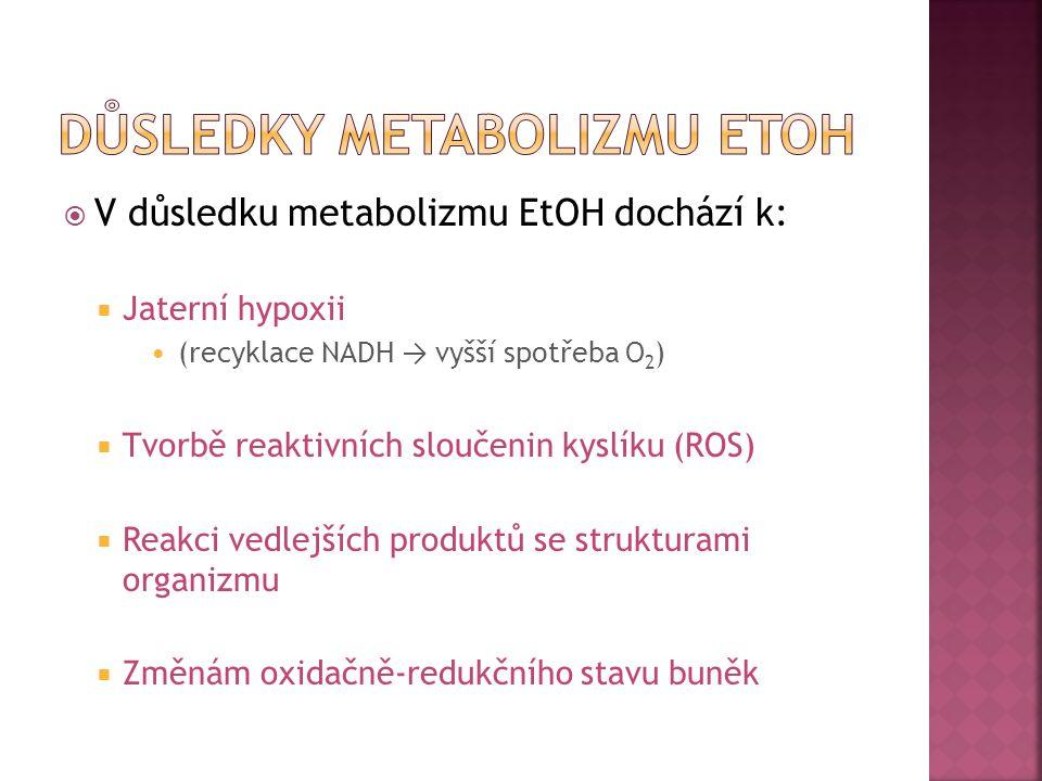  V důsledku metabolizmu EtOH dochází k:  Jaterní hypoxii (recyklace NADH → vyšší spotřeba O 2 )  Tvorbě reaktivních sloučenin kyslíku (ROS)  Reakc