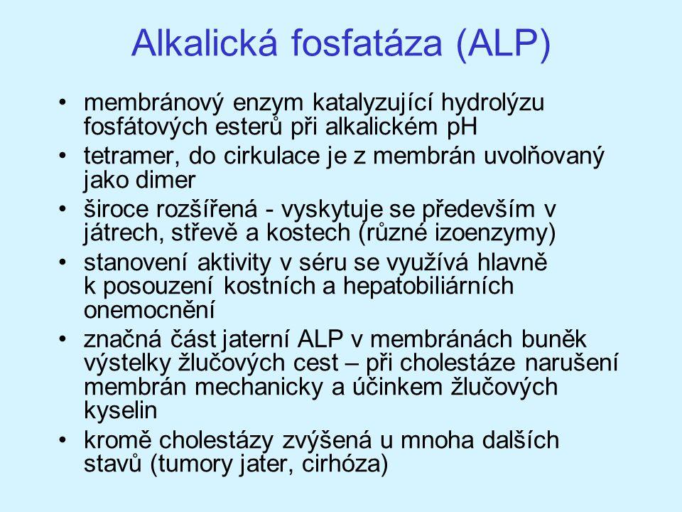 Alkalická fosfatáza (ALP) membránový enzym katalyzující hydrolýzu fosfátových esterů při alkalickém pH tetramer, do cirkulace je z membrán uvolňovaný