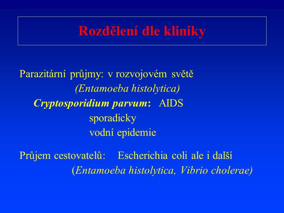 Rozd ě lení dle kliniky Parazitární pr ů jmy: v rozvojovém sv ě t ě (Entamoeba histolytica) Cryptosporidium parvum: AIDS sporadicky vodní epidemie Pr