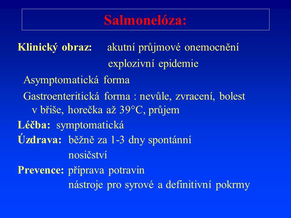 Salmonelóza: Klinický obraz: akutní průjmové onemocnění explozivní epidemie Asymptomatická forma Gastroenteritická forma : nevůle, zvracení, bolest v