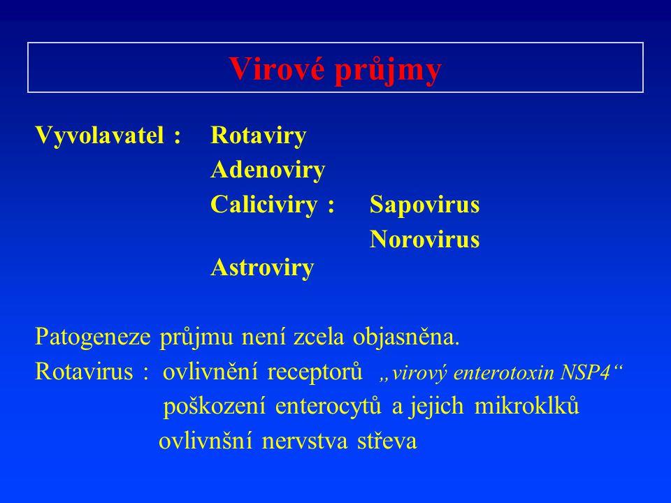 Vir ové průjmy Vyvolavatel : Rotaviry Adenoviry Caliciviry : Sapovirus Norovirus Astroviry Patogeneze průjmu není zcela objasněna. Rotavirus : ovlivně