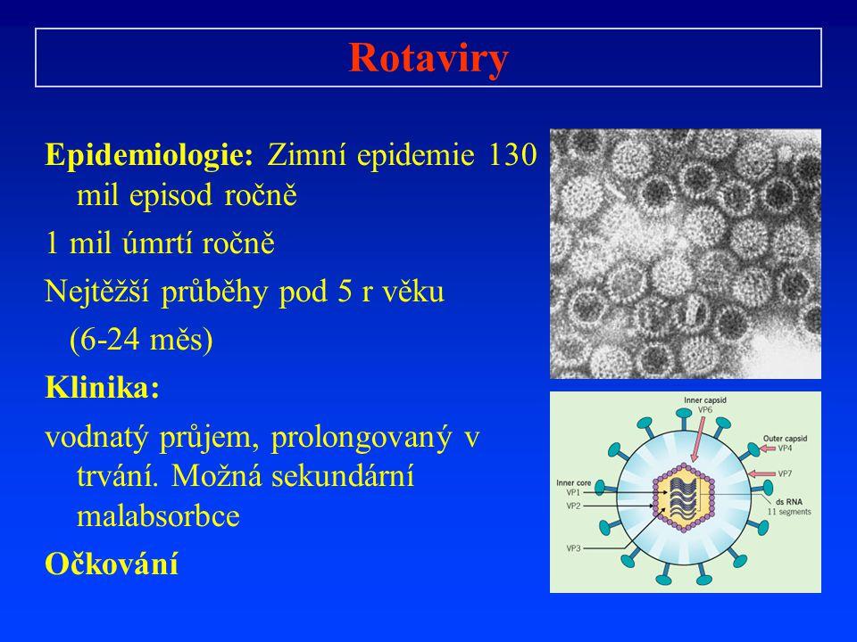 Rotaviry Epidemiologie: Zimní epidemie 130 mil episod ročně 1 mil úmrtí ročně Nejtěžší průběhy pod 5 r věku (6-24 měs) Klinika: vodnatý průjem, prolon