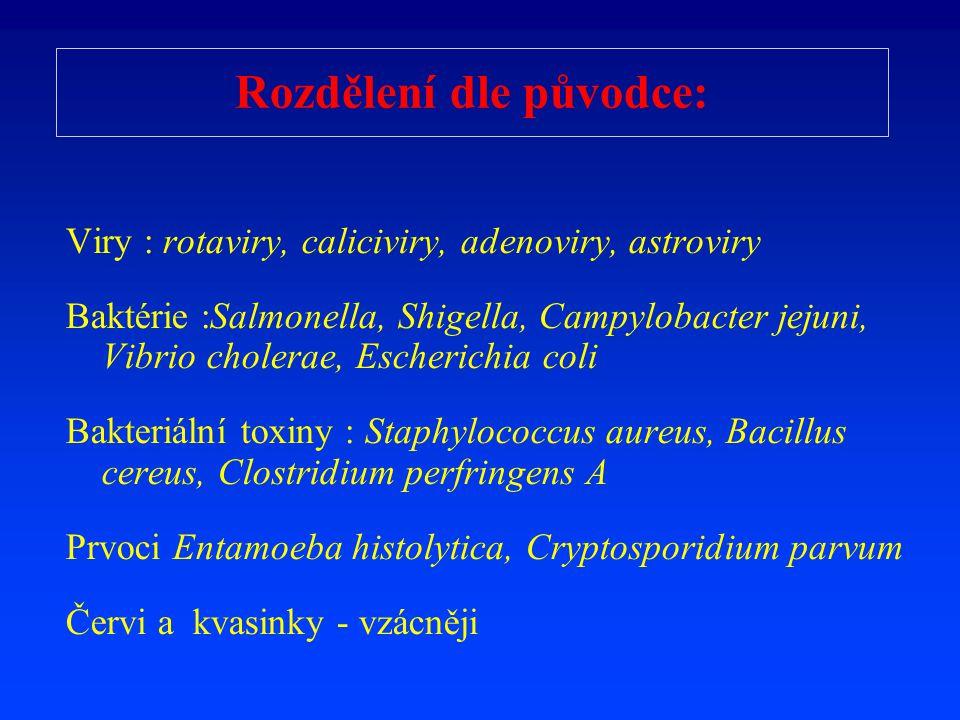 Rozdělení dle původce: Viry : rotaviry, caliciviry, adenoviry, astroviry Baktérie :Salmonella, Shigella, Campylobacter jejuni, Vibrio cholerae, Escher