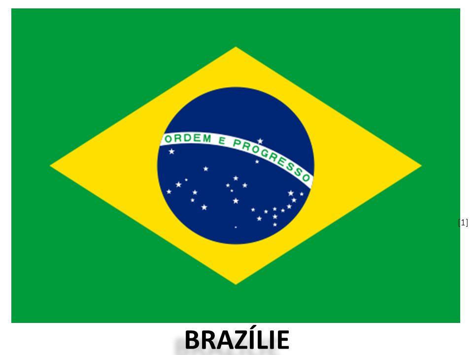 BRAZÍLIE [1][1]