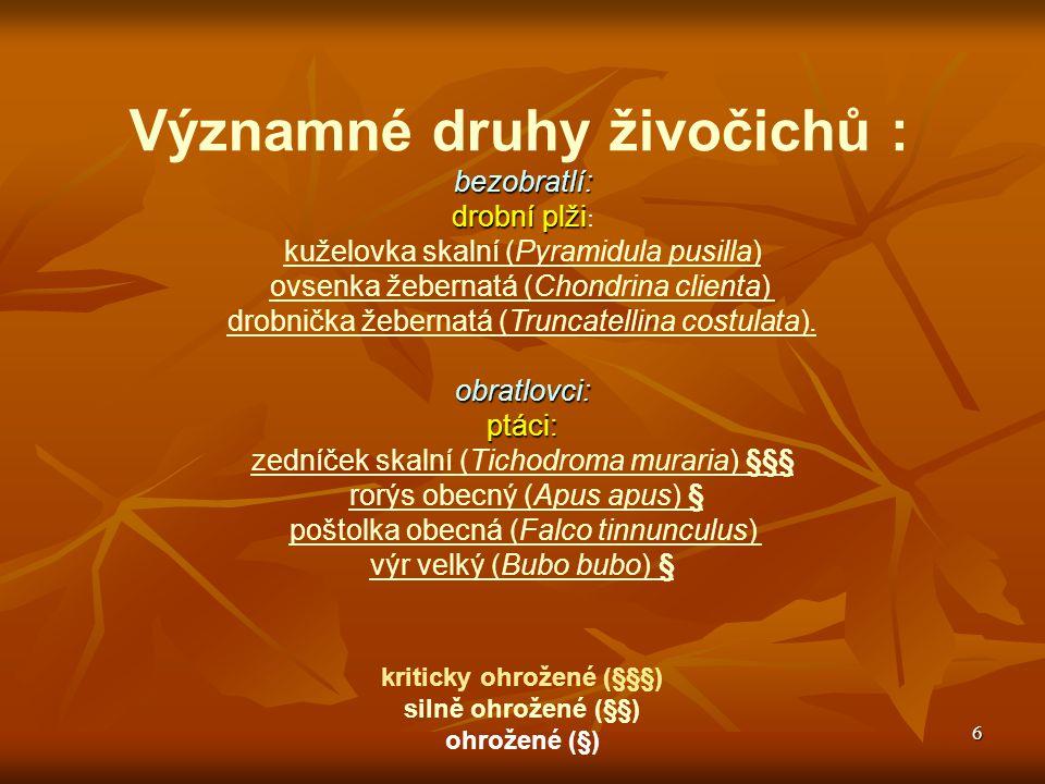 7 Významné druhy živočichů :obratlovci:letouni: netopýr pestrý (Vespertilio murinus) § netopýr řasnatý (Myotis nattereri) netopýr brvitý ( Myotis emarginatus) § netopýr vodní (Myotis daubentoni)netopýr vodní (Myotis daubentoni) netopýr vousatý (Myotis mystacinus)netopýr vousatý (Myotis mystacinus) netopýr velký (Myotis myotis) §§netopýr velký (Myotis myotis) §§ netopýr večerní (Eptesicus serotinus) netopýr ušatý (Plecotus auritus)netopýr ušatý (Plecotus auritus) netopýr dlouhouchý (Plecotus austriacus) § vrápenec malý (Rhinolophus hipposideros) §§§ kriticky ohrožené (§§§) silně ohrožené (§§) ohrožené (§)