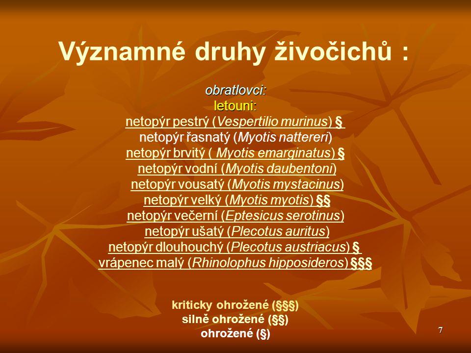 7 Významné druhy živočichů :obratlovci:letouni: netopýr pestrý (Vespertilio murinus) § netopýr řasnatý (Myotis nattereri) netopýr brvitý ( Myotis emar