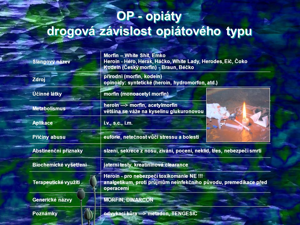 OP - opiáty drogová závislost opiátového typu OP - opiáty drogová závislost opiátového typu Slangový název Morfin – White Shit, Emko Heroin - Héro, Herák, Háčko, White Lady, Herodes, Eič, Čoko Kodein (Český morfin) - Braun, Béčko Zdroj přírodní (morfin, kodein) opinoidy: syntetické (heroin, hydromorfon, atd.) Účinné látkymorfin (monoacetyl morfin) Metabolismus heroin ---> morfin, acetylmorfin většina se váže na kyselinu glukuronovou Aplikacei.v., s.c., i.m.