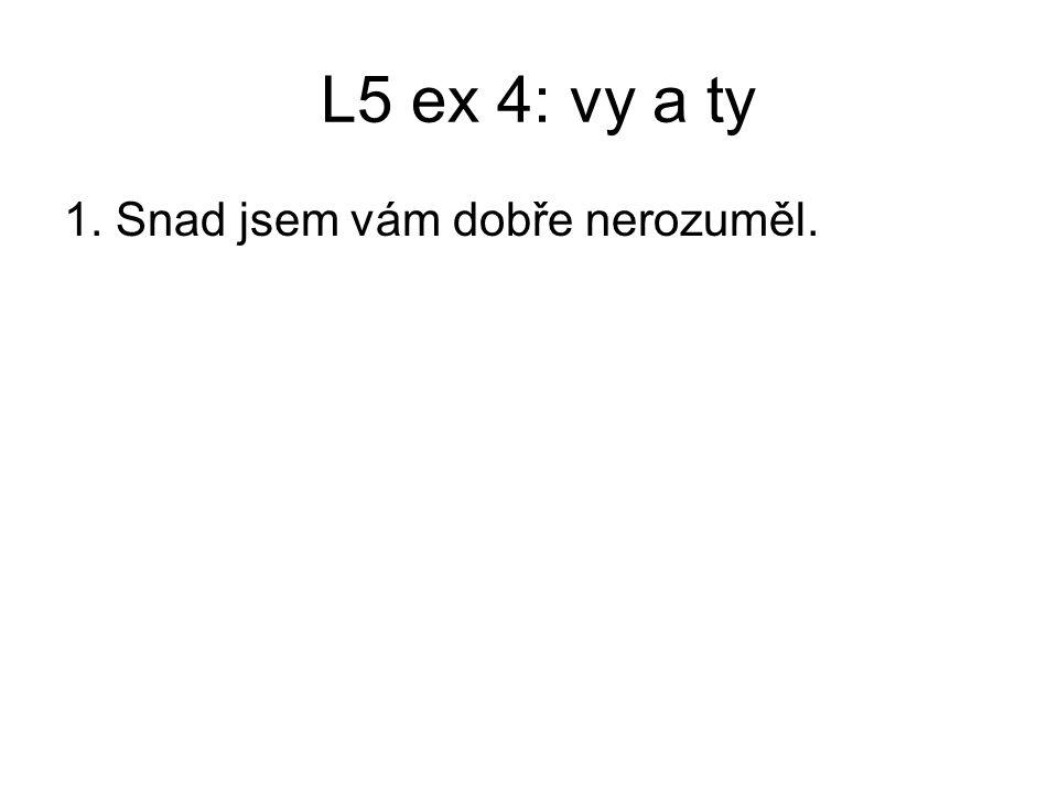 L5 ex 4: vy a ty 1. Snad jsem vám dobře nerozuměl.