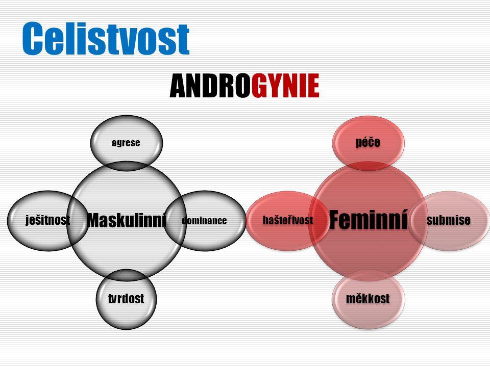 Celistvost ANDROGYNIE