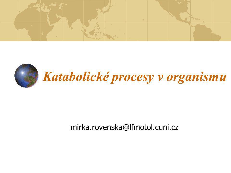 Katabolické procesy v organismu mirka.rovenska@lfmotol.cuni.cz