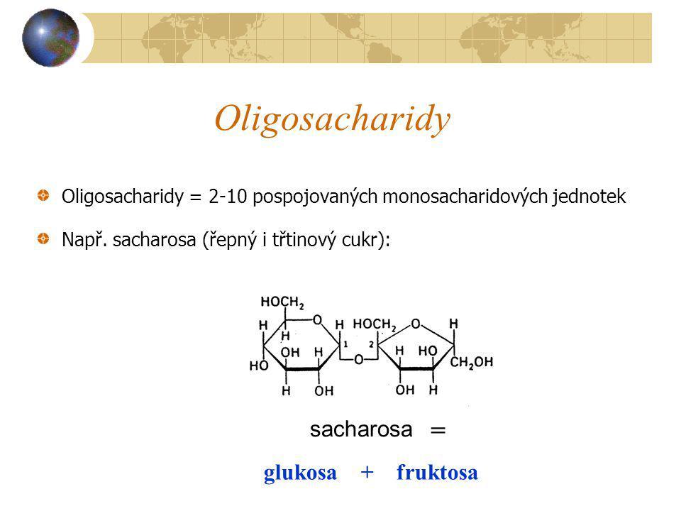 Oligosacharidy = 2-10 pospojovaných monosacharidových jednotek Např. sacharosa (řepný i třtinový cukr): glukosa + fruktosa = sacharosa Oligosacharidy