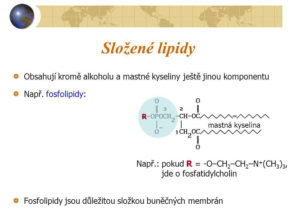 Složené lipidy Obsahují kromě alkoholu a mastné kyseliny ještě jinou komponentu Např. fosfolipidy: Fosfolipidy jsou důležitou složkou buněčných membrá