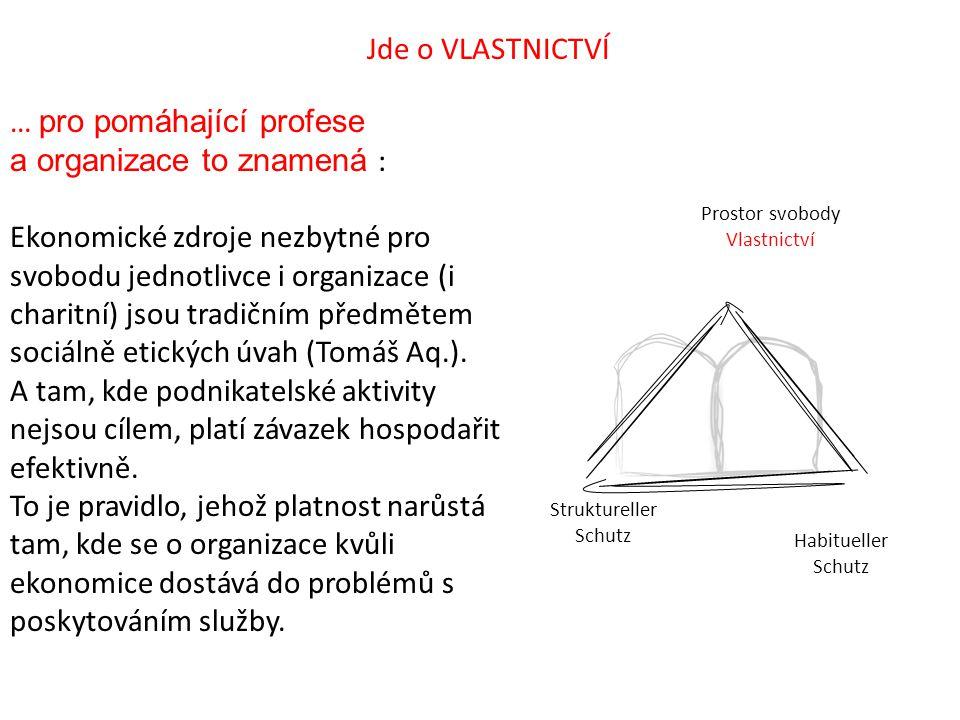 Prostor svobody Vlastnictví Struktureller Schutz Habitueller Schutz Jde o VLASTNICTVÍ … pro pomáhající profese a organizace to znamená : Ekonomické zd