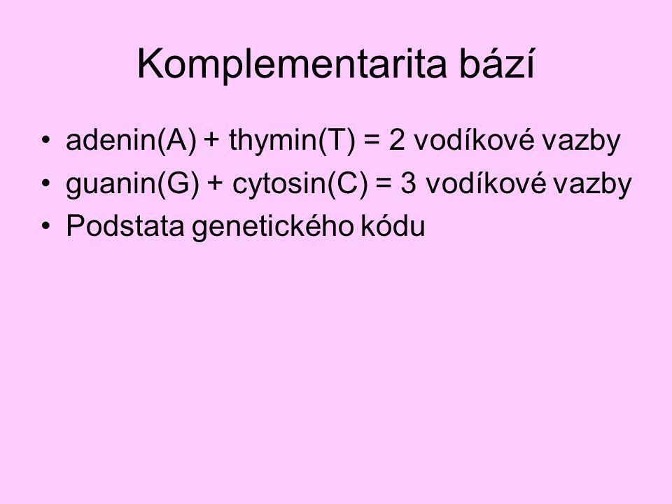 Komplementarita bází adenin(A) + thymin(T) = 2 vodíkové vazby guanin(G) + cytosin(C) = 3 vodíkové vazby Podstata genetického kódu