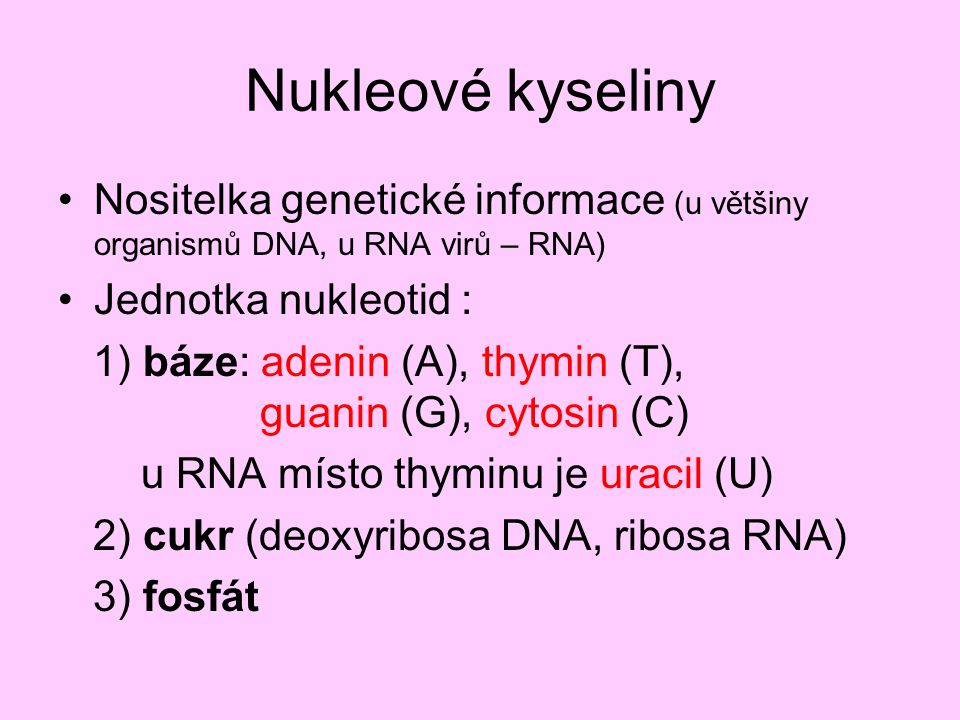 DNA x RNA Deoxyribonukleová kyselina dva polynukleotidové řetězce deoxyribóza A, T, G, C Ribonukleová kyselina jeden polynukleotidový řetězec ribóza A, U, G, C