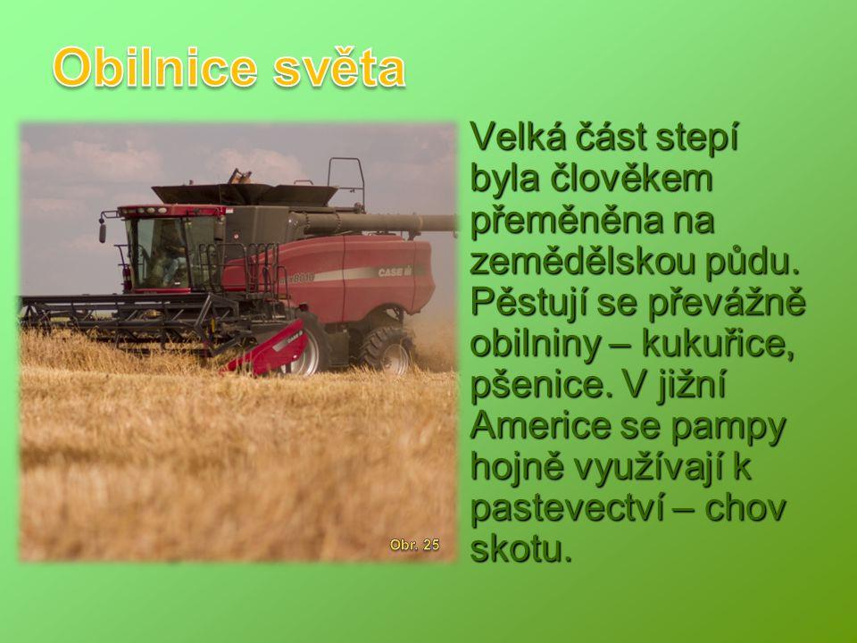 Velká část stepí byla člověkem přeměněna na zemědělskou půdu. Pěstují se převážně obilniny – kukuřice, pšenice. V jižní Americe se pampy hojně využíva