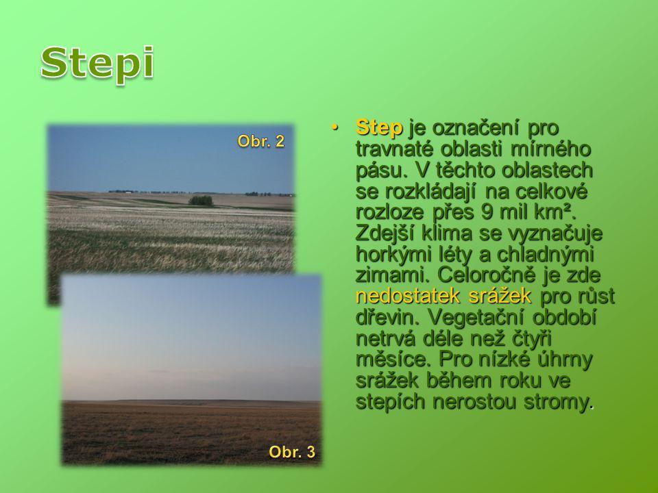Step je označení pro travnaté oblasti mírného pásu. V těchto oblastech se rozkládají na celkové rozloze přes 9 mil km². Zdejší klima se vyznačuje hork