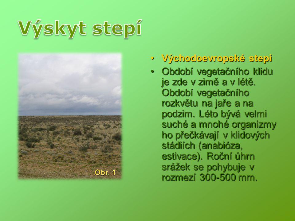 Východoevropské stepiVýchodoevropské stepi Období vegetačního klidu je zde v zimě a v létě. Období vegetačního rozkvětu na jaře a na podzim. Léto bývá