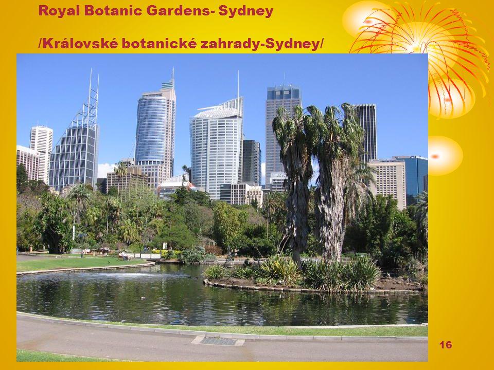 16 Royal Botanic Gardens- Sydney /Královské botanické zahrady-Sydney/