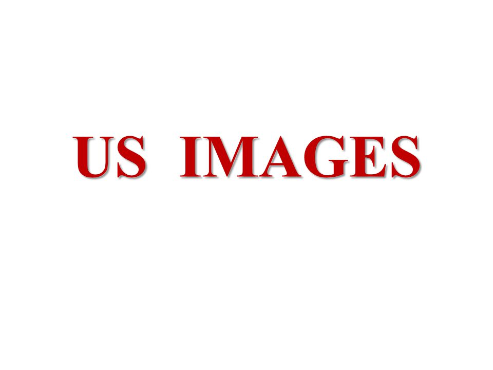 US IMAGES