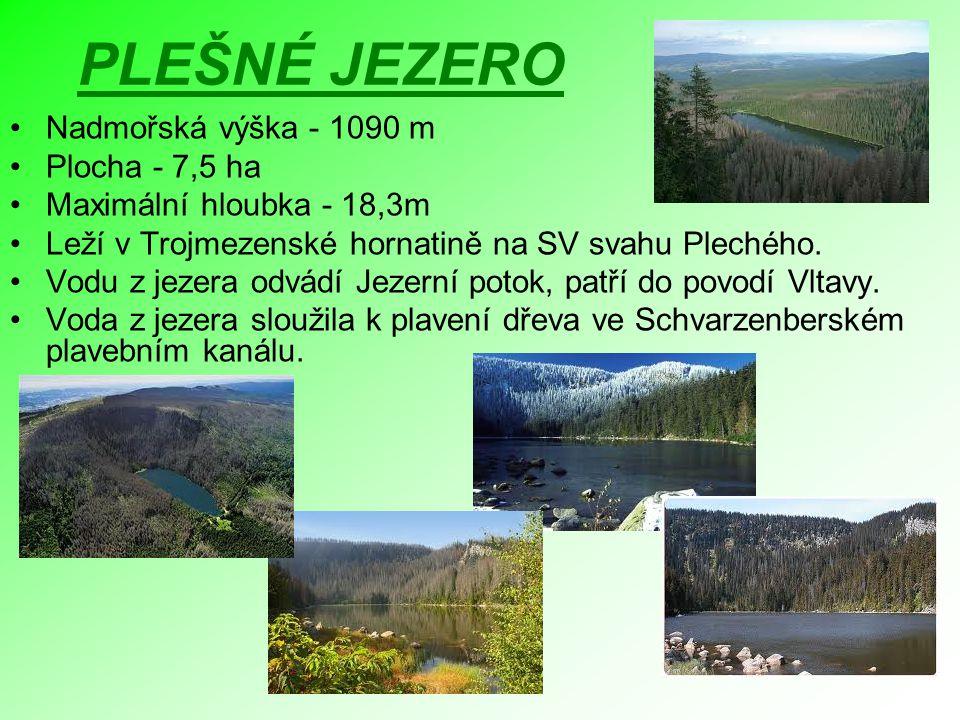 PLEŠNÉ JEZERO Nadmořská výška - 1090 m Plocha - 7,5 ha Maximální hloubka - 18,3m Leží v Trojmezenské hornatině na SV svahu Plechého. Vodu z jezera odv