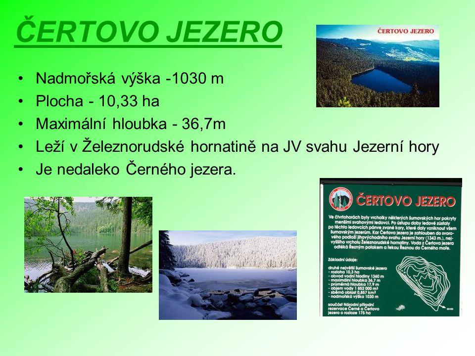 ČERTOVO JEZERO Nadmořská výška -1030 m Plocha - 10,33 ha Maximální hloubka - 36,7m Leží v Železnorudské hornatině na JV svahu Jezerní hory Je nedaleko