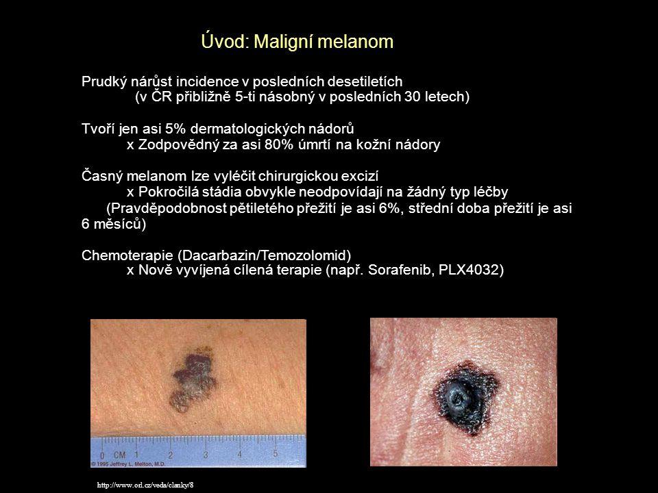 Prudký nárůst incidence v posledních desetiletích (v ČR přibližně 5-ti násobný v posledních 30 letech) Tvoří jen asi 5% dermatologických nádorů x Zod